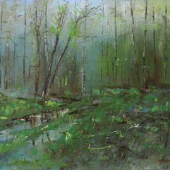 1create - After the Rain in the Forest by Vitaliy Mashchenko